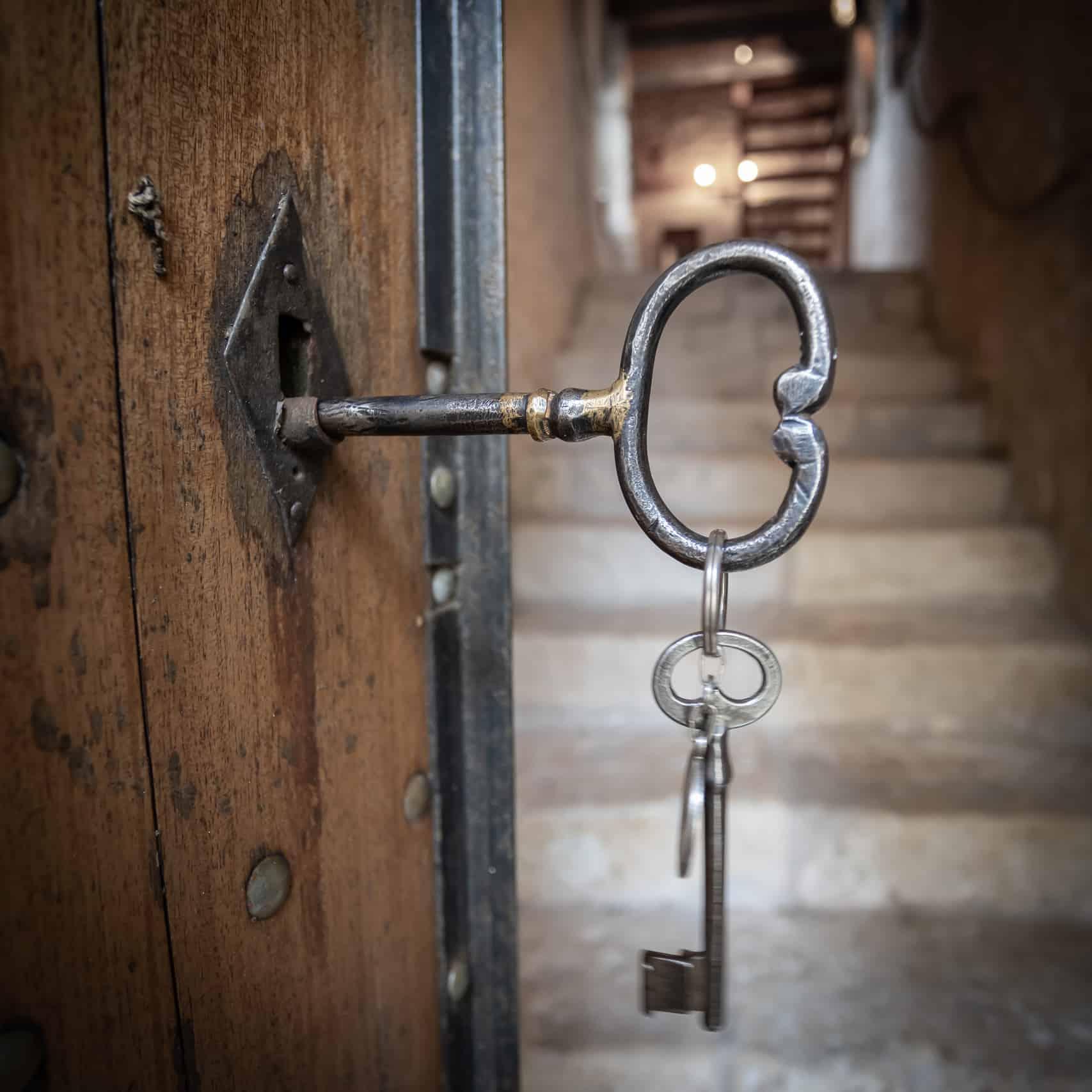 Porte d'entrée clé-47015