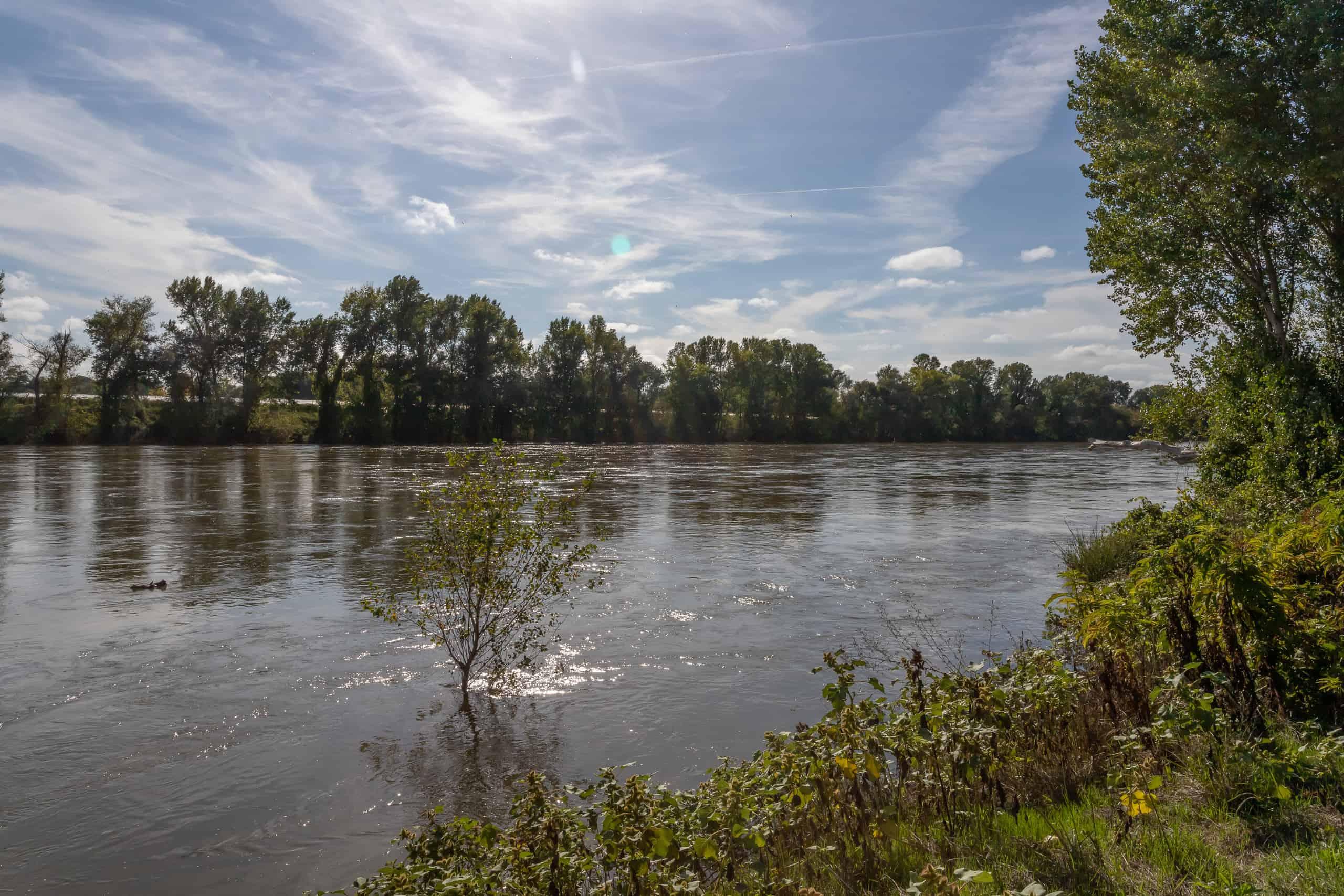 River-view-47014
