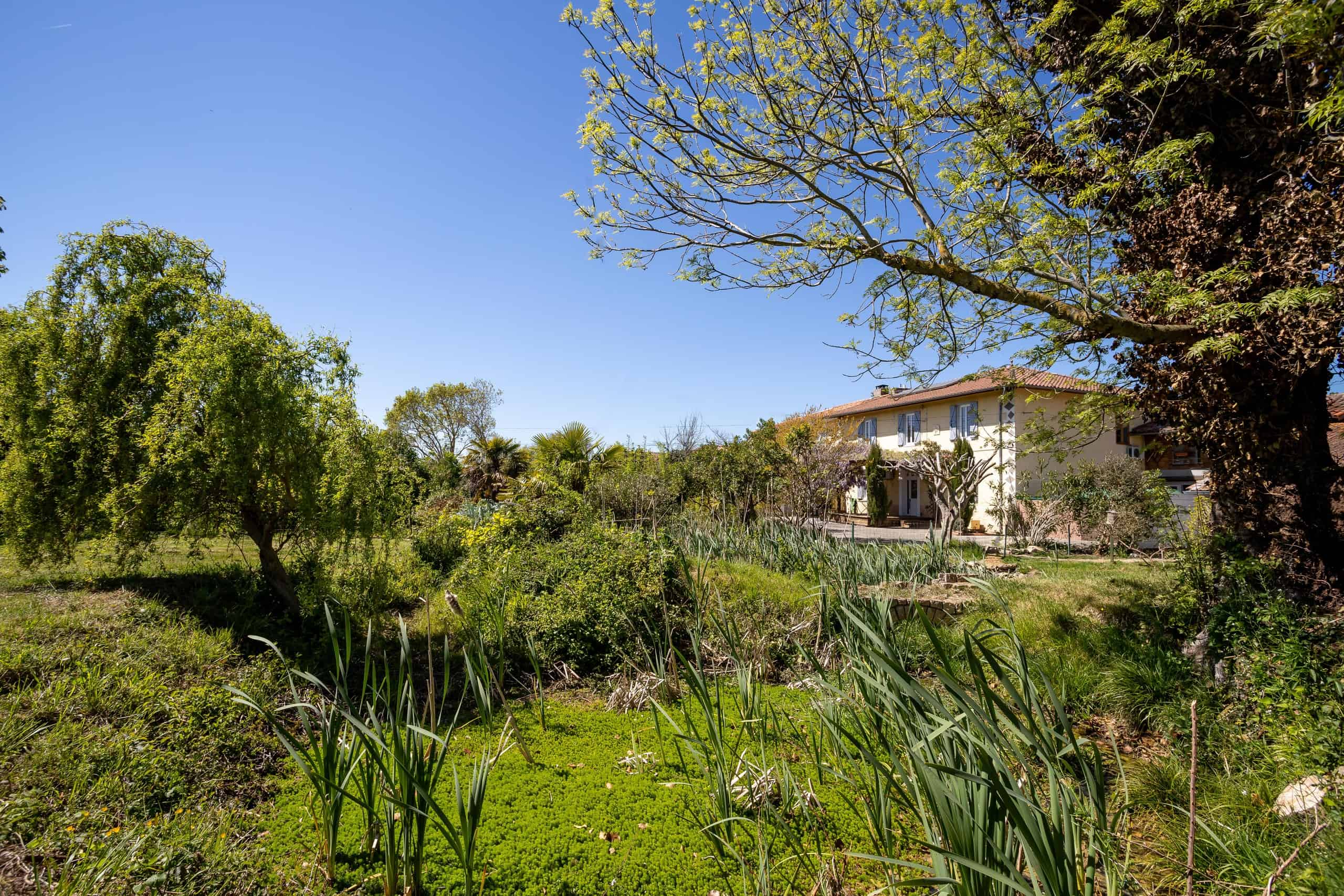 Smallholding with view of the Pyrenées