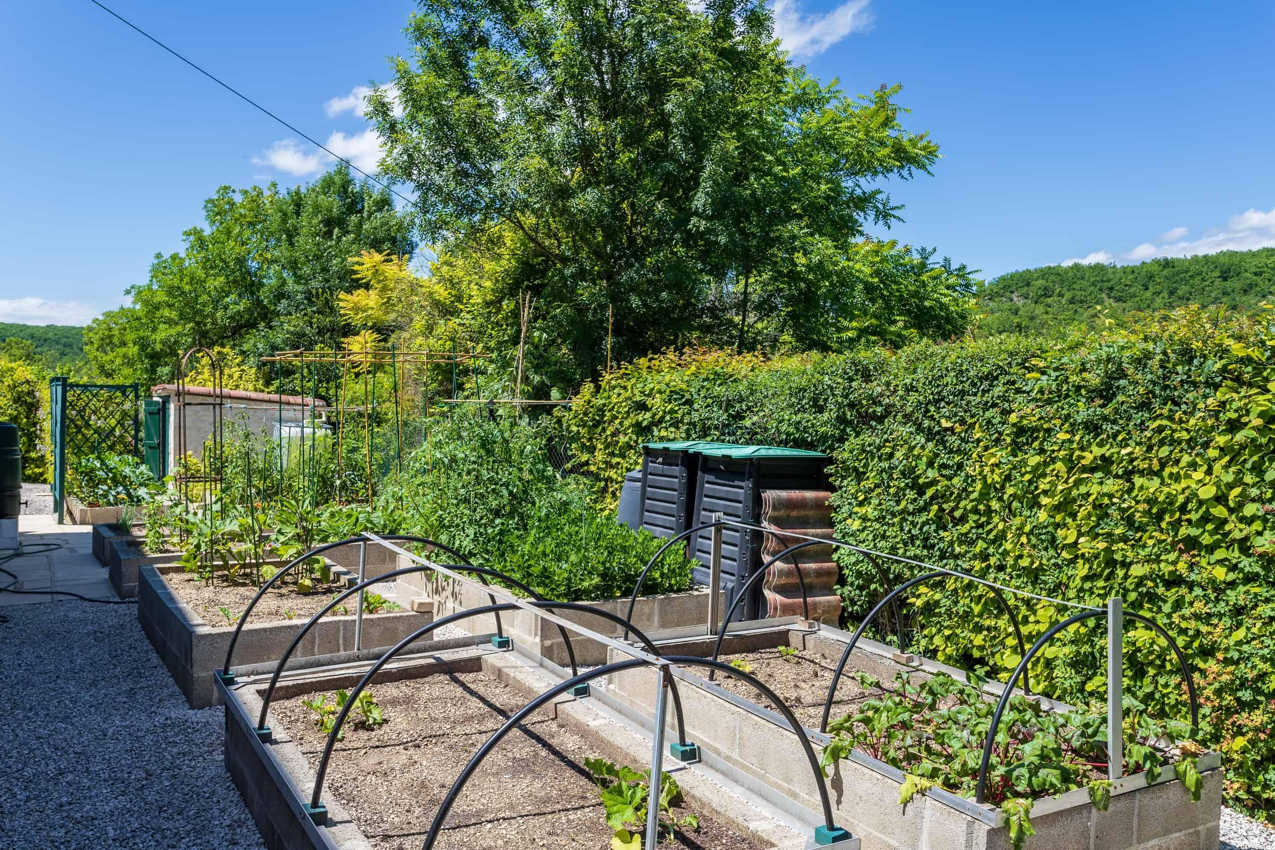 Vegetable-garden-WMC083