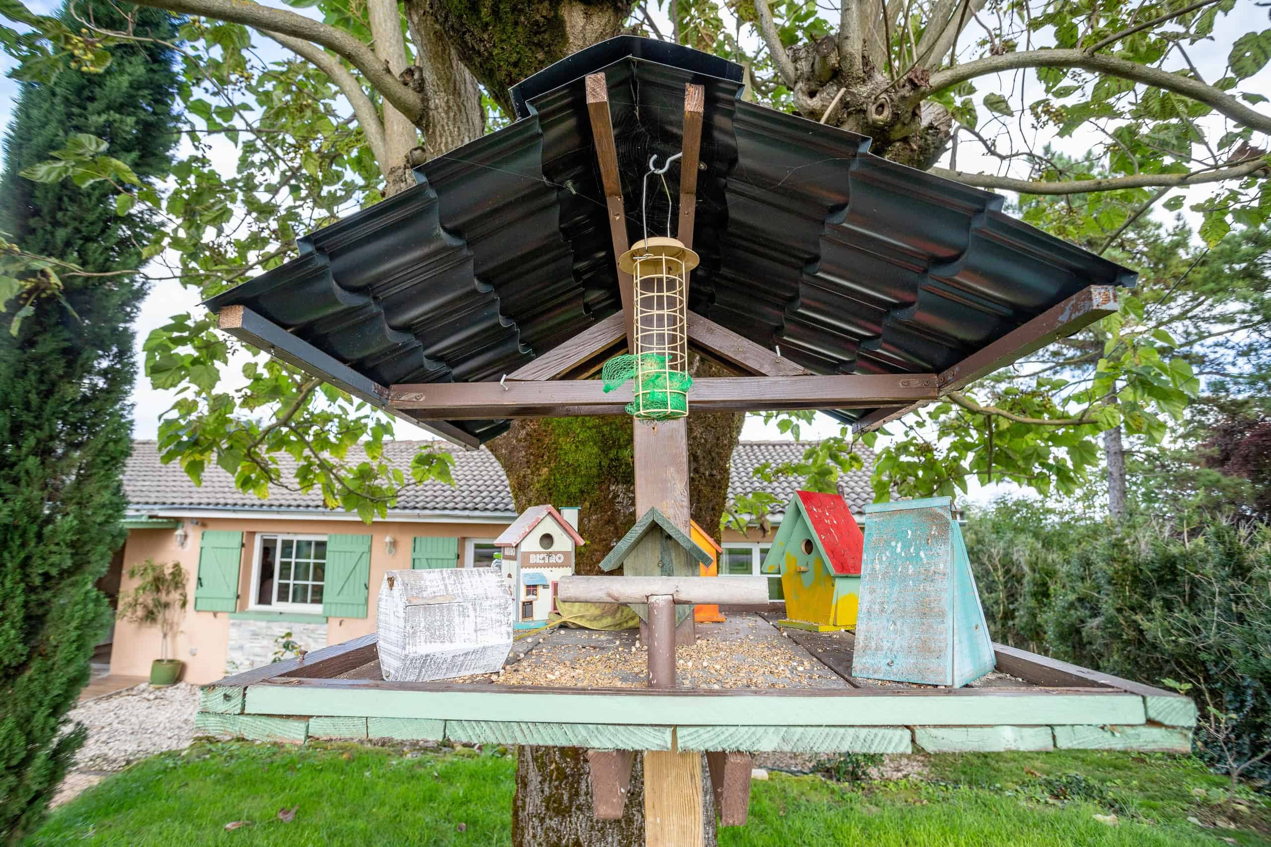 Maison d'oiseau-WMC109